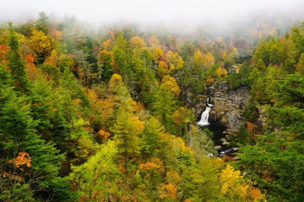 A bird's-eye view of Linville falls from a trail overlook