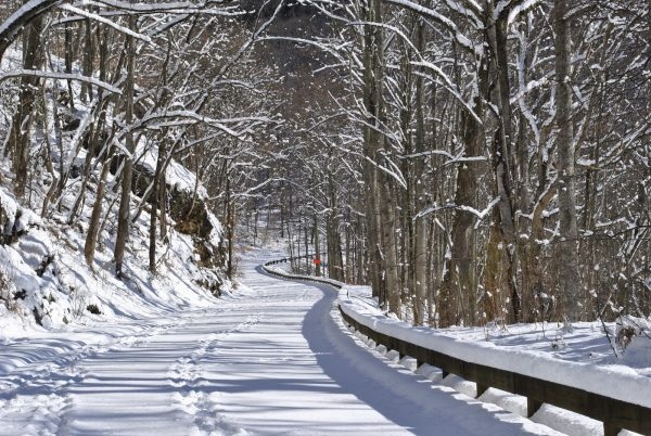 Blue Ridge Parkway Winter