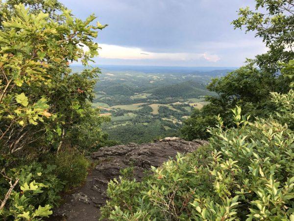 Rhododenron Trail