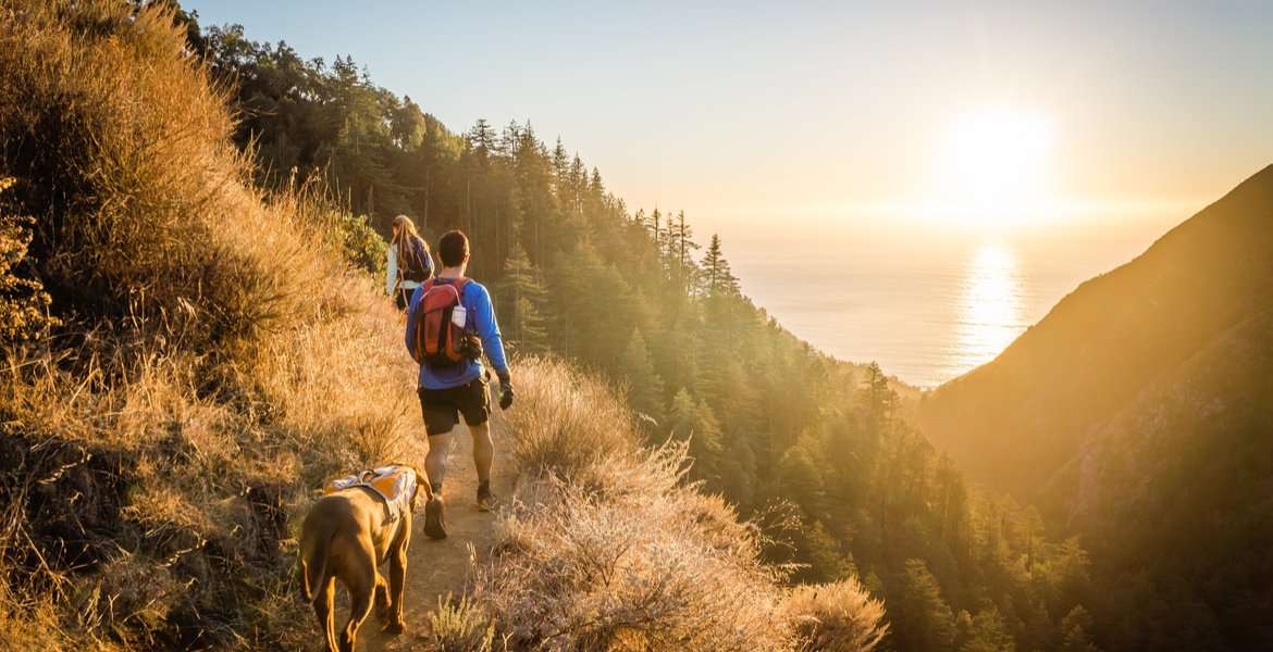 Dog-Friendly Hikes in the High Country | Linville Land Harbor